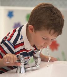 copii america apa